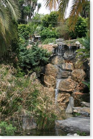 Gardens of Capistrano Playa